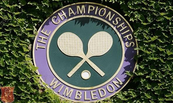 Prvi protiv trećeg tenisera svijeta u finalu Vimbldona
