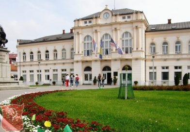 Vojislav Durmanović: Bijeljina između Arkana i Nikole Mačkića